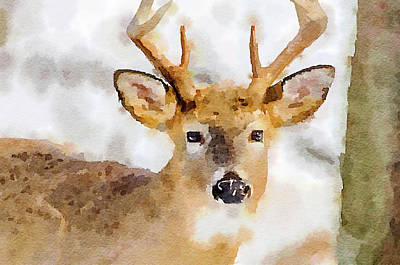 Poster featuring the painting Buck Profile by Steven Santamour