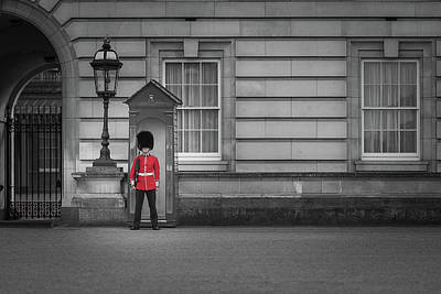 Buckingham Palace Guard Poster by Martyn Higgins