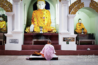 Buddhist Nun At Shwedagon Pagoda Poster by Dean Harte