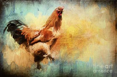 Buff Brahma Mrs. Darwin's Rooster  Poster