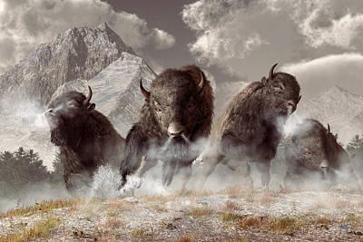 Buffalo Poster by Daniel Eskridge