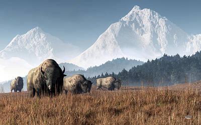 Buffalo Grazing Poster