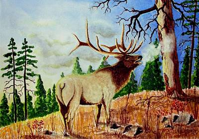 Bugling Elk Poster by Jimmy Smith