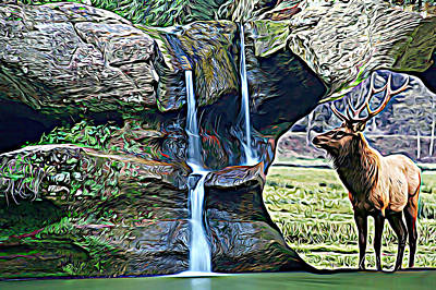 Bull Elk By A Waterfall Poster
