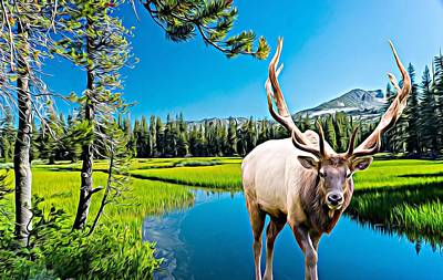 Bull Elk By The Lake Poster