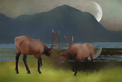 Bull Wapiti On A Moonlit Night Poster