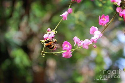 Poster featuring the photograph Bumble Bee1 by Megan Dirsa-DuBois