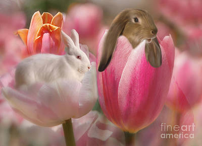 Bunny Blossoms Poster by Elaine Manley