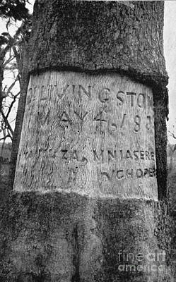 Burial Site Of Livingstones Heart Poster