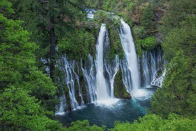 Poster featuring the photograph Burney Creek Falls by Patricia Davidson