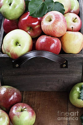 Bushel Of Apples  Poster
