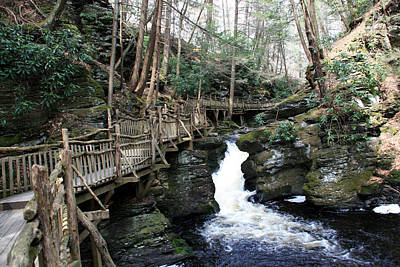 Bushkill Falls Boardwalk 2 Poster by George Jones