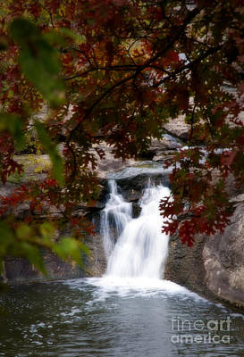 Butcher Falls In Autumn Colors Poster by Fred Lassmann