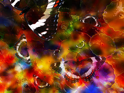 Butterflies Get Their Colors Poster by Stuart Turnbull