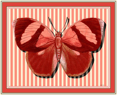 Butterfly 24 Poster by Robert Todd