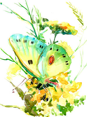 Butterfly And Flowers Poster by Suren Nersisyan