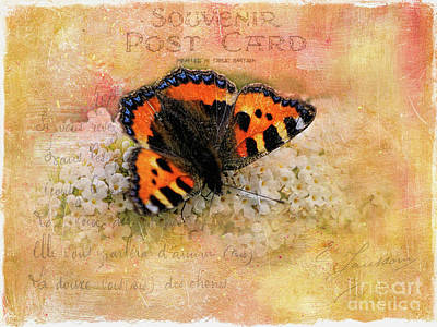 Butterfly Heaven Poster by Gillian Singleton