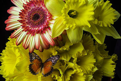 Butterfly On Daffodils Poster by Garry Gay
