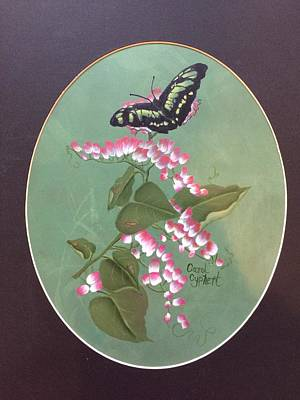 Butterfly On Flowers Poster by Carol Cyphert