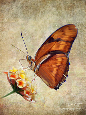 Poster featuring the pyrography Butterfly by Savannah Gibbs