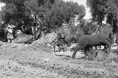 Bw Of Mosaicanada Scenery Poster