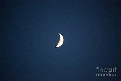 By The Light Of The Moon Methow Valley Abstract By Omashte Poster by Omaste Witkowski
