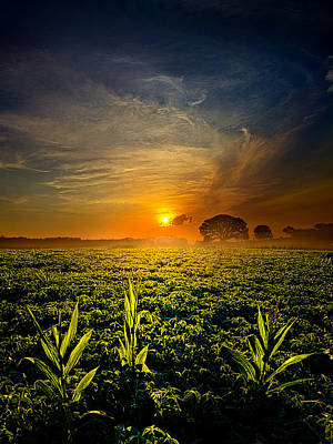 By Three Poster by Phil Koch
