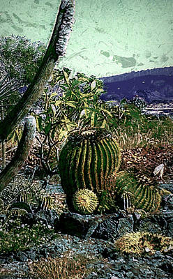 Poster featuring the photograph Cacti by Lori Seaman