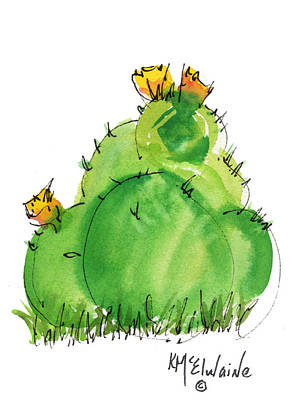 Cactus In The Yellow Flower Watercolor Painting By Kmcelwaine Poster by Kathleen McElwaine
