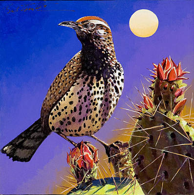 Cactus Wren Poster by Bob Coonts