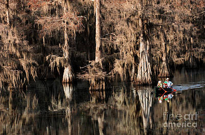 Caddo Lake Texas 1 Poster by Bob Christopher