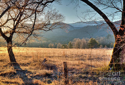 Poster featuring the photograph Cades Cove, Spring 2017 by Douglas Stucky