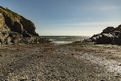 Poster featuring the photograph Cadgwith Cove Beach by Brian Roscorla