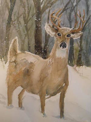 Poster featuring the painting Caedmon's Buck by Sandra Strohschein