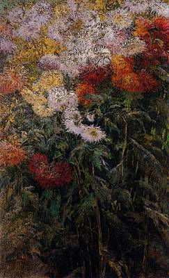 Caillebotte Gustave Clump Of Chrysanthemums Garden At Petit Gennevilliers Poster by Gustave Caillebotte