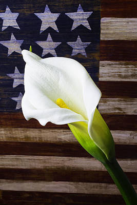Cala Lily And American Flag Poster by Garry Gay
