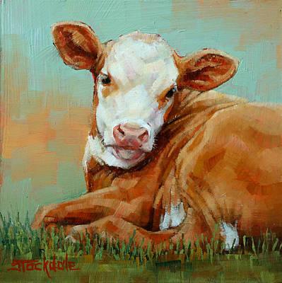 Calf Resting Poster by Margaret Stockdale