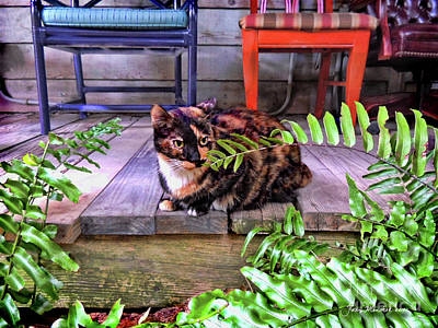 Calico Cat Key West Porch Poster by Joan Minchak
