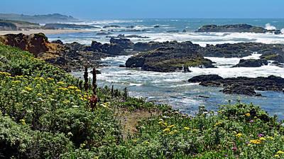 California Coast No. 9-1 Poster