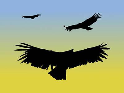 California Condors In Flight Silhouette At Sunrise Poster