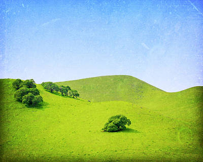Poster featuring the photograph California Hillside by Melanie Alexandra Price