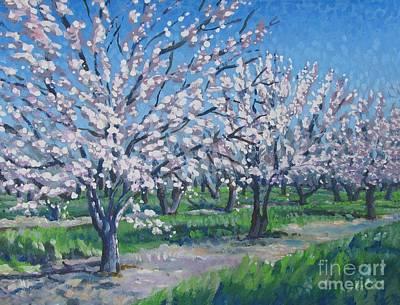 California Orchard Poster by Vanessa Hadady BFA MA
