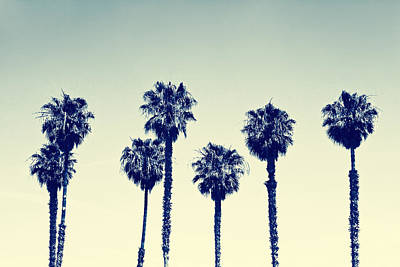 California Palm Trees Poster by Anna Floridia