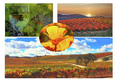 California Wine Country Poster by Stephanie Laird