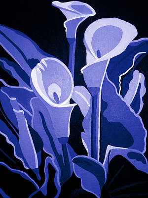 Calla Lilies Royal Poster by Angelina Vick
