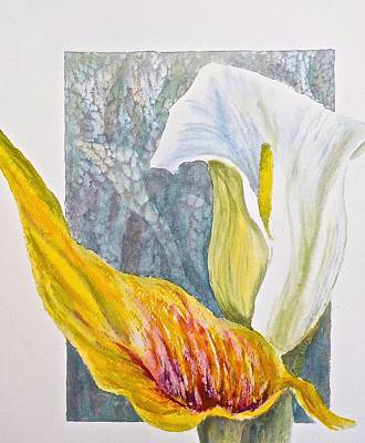 Calla Lily Poster by Carolyn Rosenberger