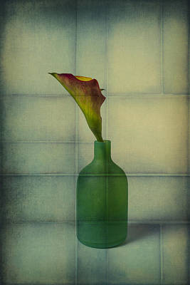Calla Lily In Green Vase Poster by Garry Gay