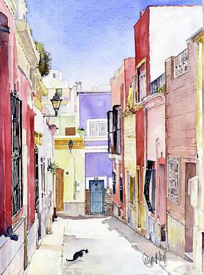Calle En El Casco Antiguo Almeria Poster