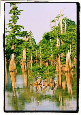Calm Bayou Poster
