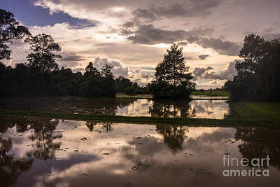 Cambodia Rice Fields Clouds Reflection Poster